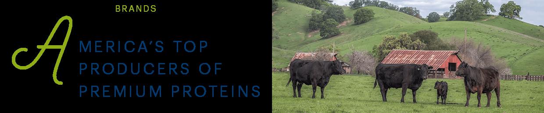 Perdue Farms brands