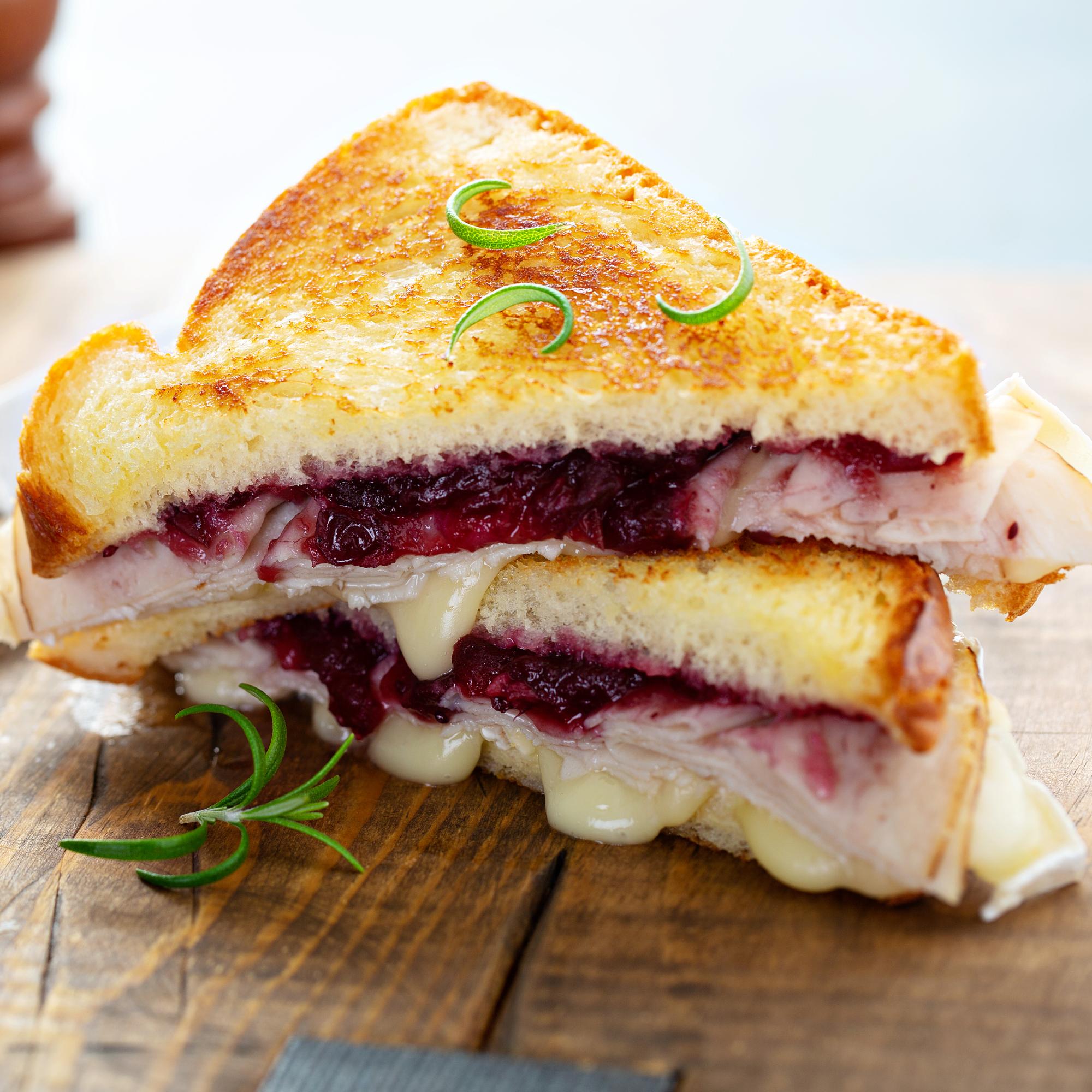turkey and cranberry sauce sandwich recipe